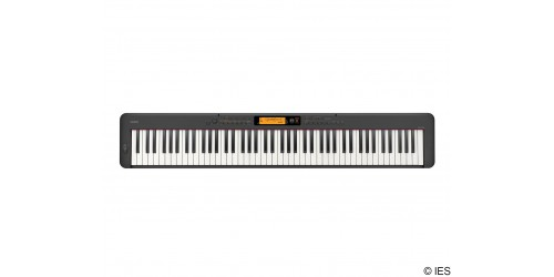 CASIO CDPS350